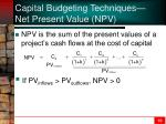 capital budgeting techniques net present value npv