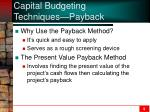 capital budgeting techniques payback2