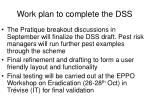 work plan to complete the dss