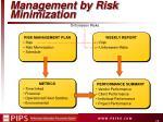 management by risk minimization