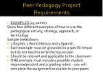 peer pedagogy project requirements3