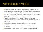 peer pedagogy project