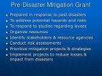 pre disaster mitigation grant