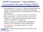 saph components vulnerabilities assessment security testing vast