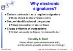 why electronic signatures