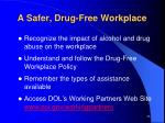 a safer drug free workplace
