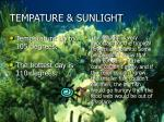 tempature sunlight