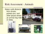 risk assessment animals