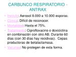 carbunco respiratorio antrax