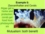 mutualism both benefit2
