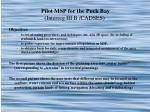 pilot msp for the puck bay interreg iii b cadses