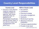 country level responsibilities
