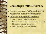 challenges with diversity2