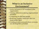 what is an inclusive environment