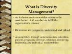 what is diversity management1