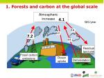1 forests and carbon at the global scale
