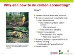 why and how to do carbon accounting