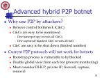 advanced hybrid p2p botnet