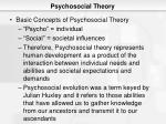 psychosocial theory5