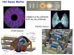 hot dense matter
