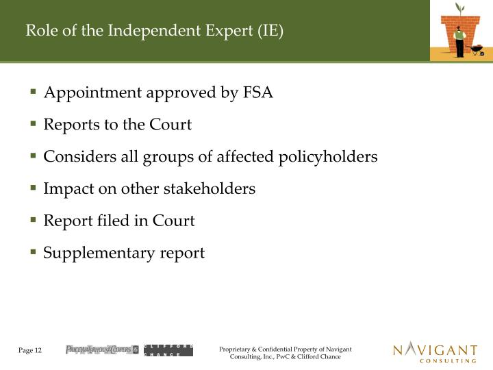 Role of the Independent Expert (IE)