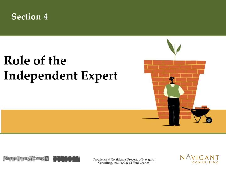 Role of the Independent Expert