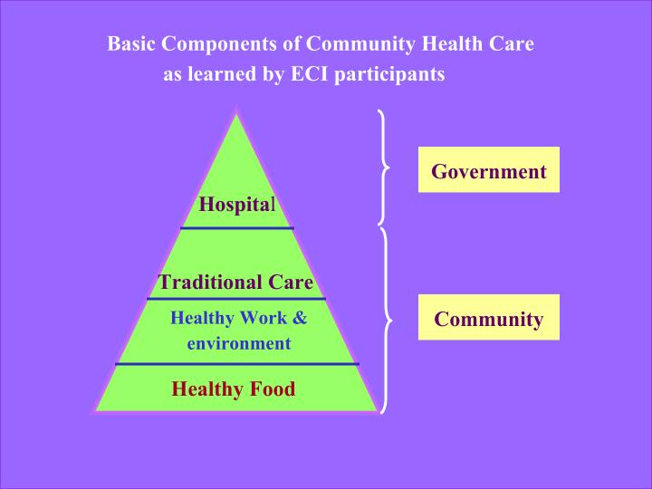 Basic Components of Community Health Care