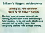 erikson s stages adolescence
