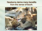 newborns derive many benefits from the sense of touch
