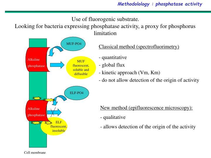Methodolology : phosphatase activity