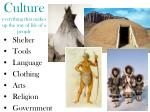 culture everything that makes up the way of life of a people