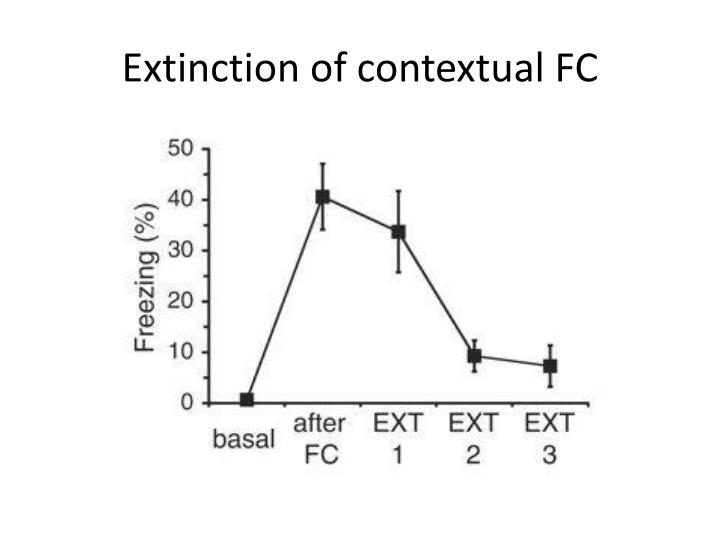 Extinction of contextual FC