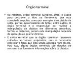 rg o terminal