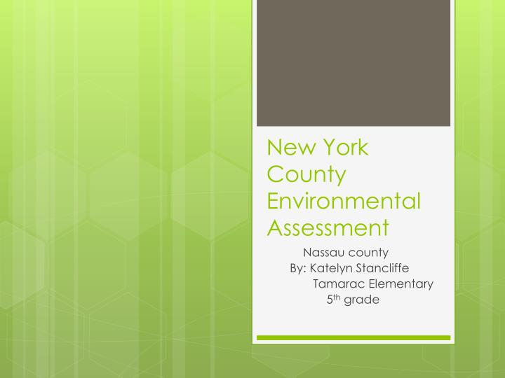 new york county environmental assessment n.