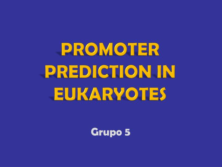promoter prediction in eukaryotes n.