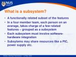 what is a subsystem