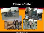 plane of life2