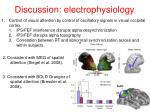 discussion electrophysiology