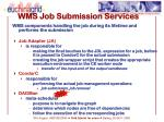 wms job submission services