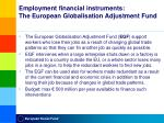 employment financial instruments the european globalisation adjustment fund