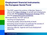 employment financial instruments the european social fund1