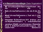 data orgaization
