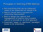 principals in defining erm metrics
