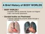 a brief history of body worlds