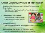 other cognitive views of motivation