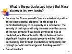 what is the particularized injury that mass claims to its own lands