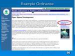 example ordinance