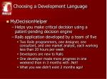 choosing a development language