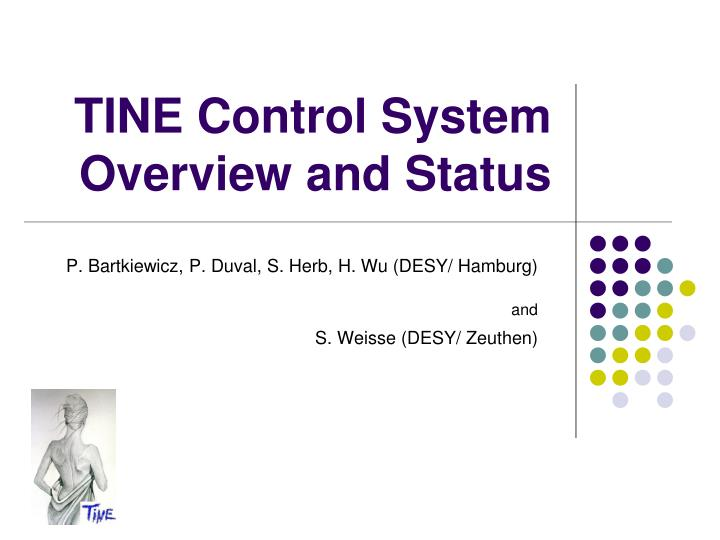 tine control system overview and status n.