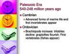 paleozoic era 540 248 million years ago1